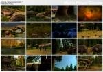 Planeta Dinozaurów / Dinosaur Planet (2009) PL.TVRip.XviD